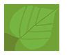 Смесители Rossinka Silvermix безопасны для потребителя и окружающей среды